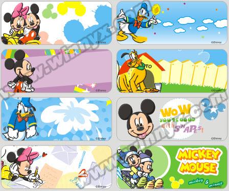 F13 - Mickey