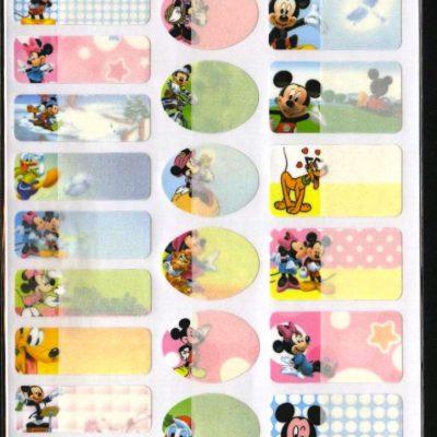 T013 - Mickey